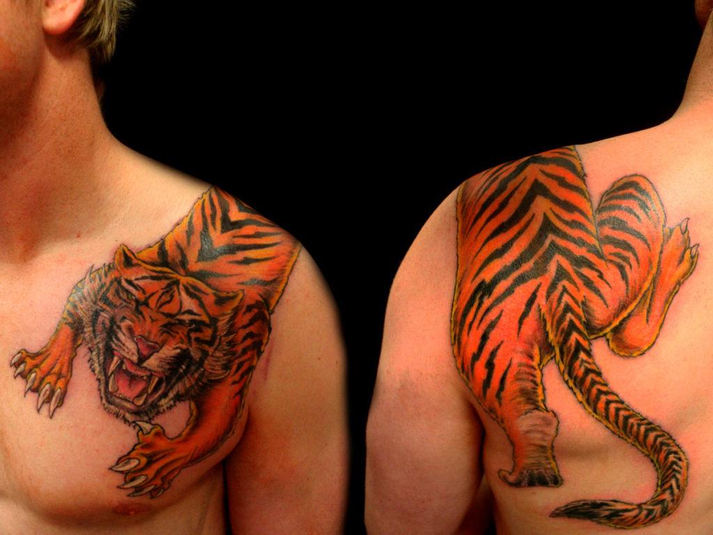 color-ink-tiger-tattoo-on-man-left-shoulder